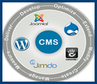 cms website development services india bikaner